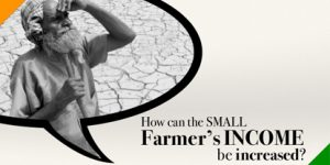 HOW can the small Farmer's Income in India be Increased?